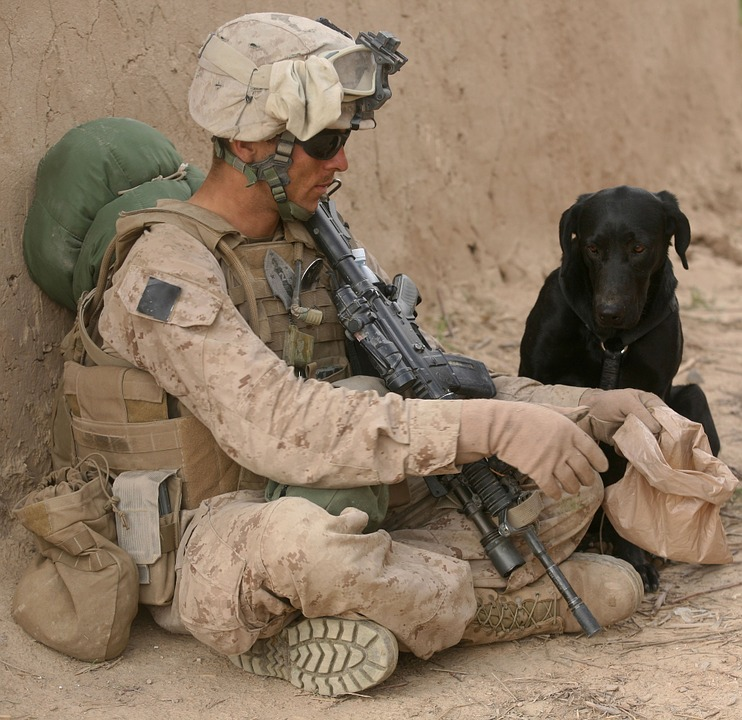soldier and dog waiting in the desert